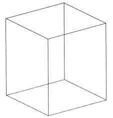 Necker's Cube (1)