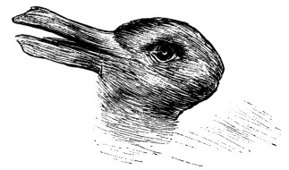 Rabbit-Duck Image